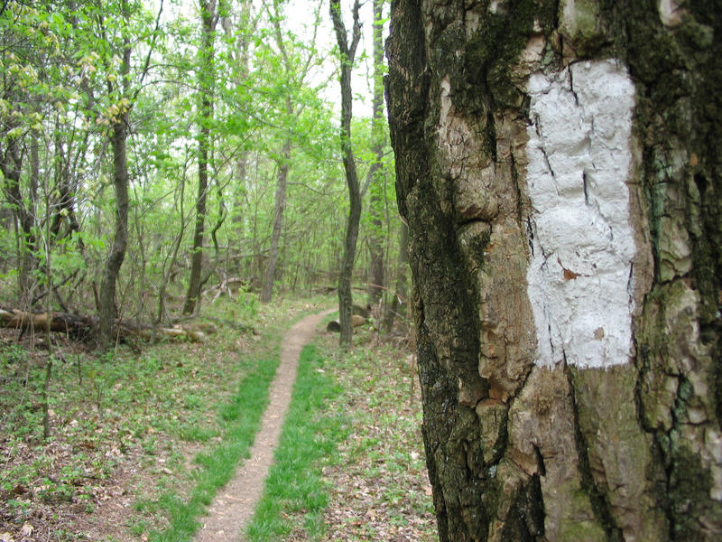 Due to recent high profile Hollywood movies about hiking, and a 10 percent increase of hikers per year on the Appalachian Trail, the Appalachian Trail Conservacy has set up a new, voluntary online registration for hikers to use before they hit the trail.