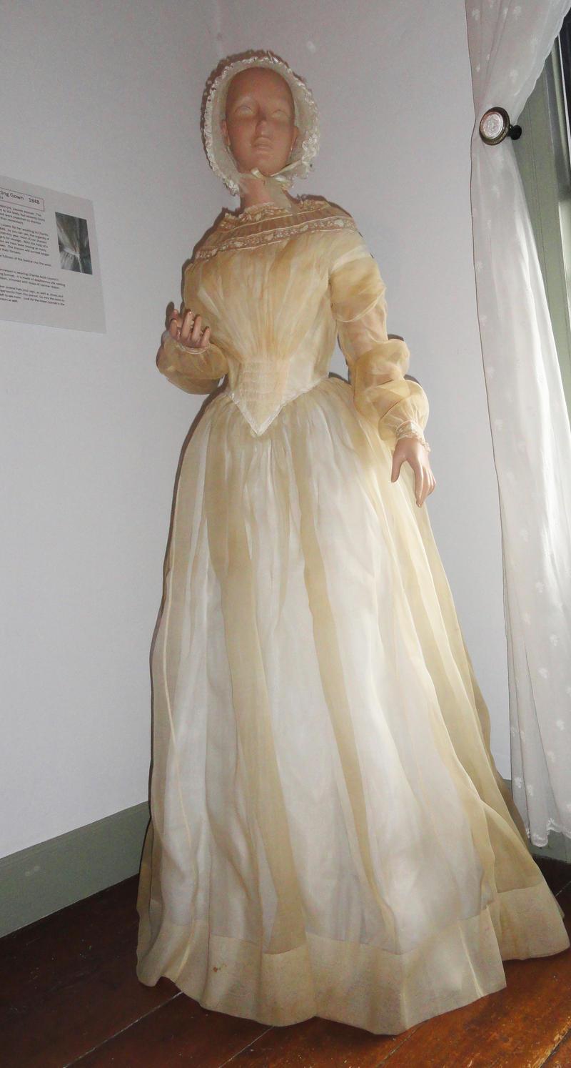 Charitie Scott Loomis Dana's gown