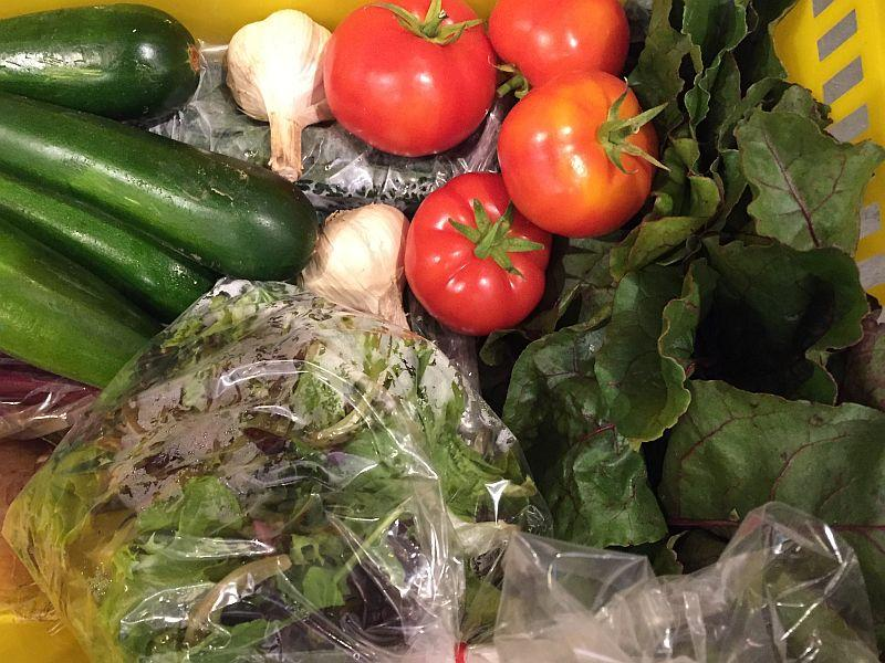 CSA baskets, vegetable gardens, and farmers' market stands are teeming right now.