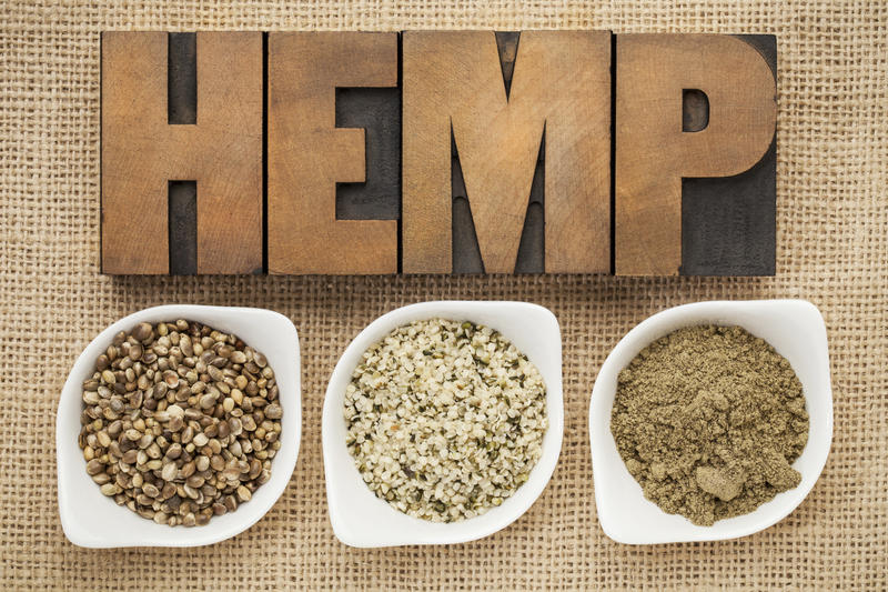Lawmakers are considering allowing marijuana dispensaries to grow hemp in an effort to meet demand for an oil that can be used to treat medical conditions.