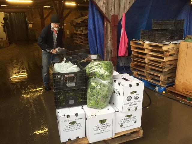 Tracy Lake loads his truck with local produce at Harlow Farm in Westminster. Lake delivers the food to schools and hospitals in the region.