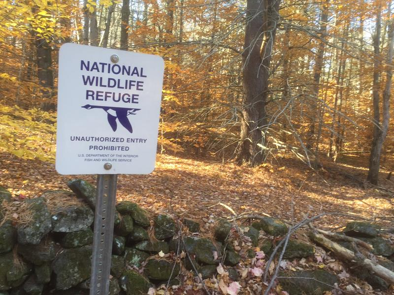 U.S. Fish and Wildlife wants to more than double the land in the Silvio. O. Conte Wildlife Refuge, which includes land on Putney Mountain. The plan has support from the Putney Mountain Association, but the Connecticut River Watershed Council opposes it.