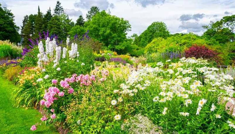 Vermont garden journal tips for great garden design for Great garden designs