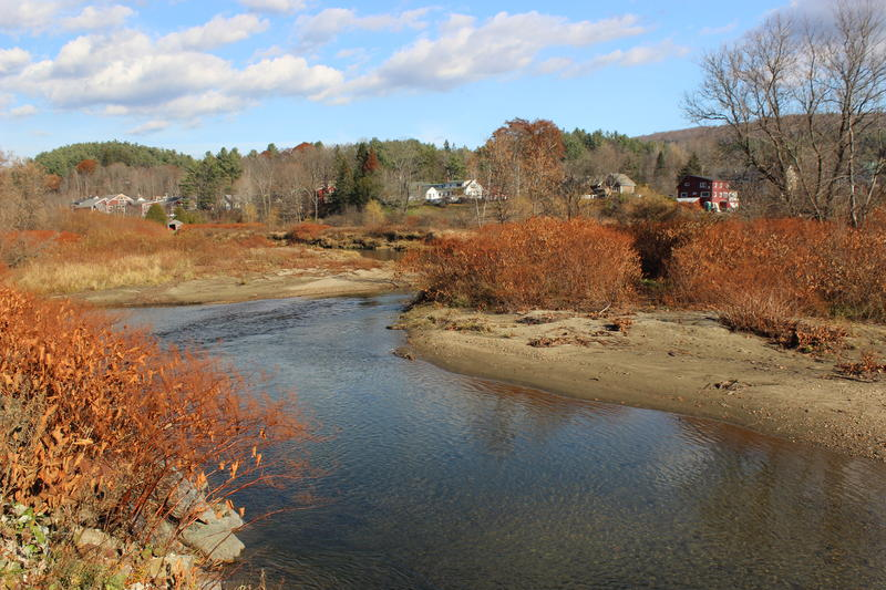 A new floodplain is forming in a river corridor easement Vermont purchased in Stowe. Instead of bolstering riverbanks with expensive rock walls, the state has been working in this town and others to let rivers carve out their natural paths.