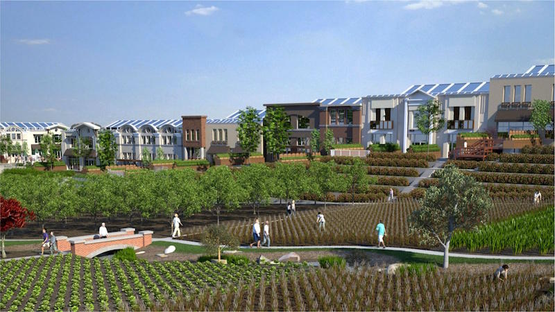An artist's rendering of a NewVista community, which would include terraced gardens and rooftop greenhouses.