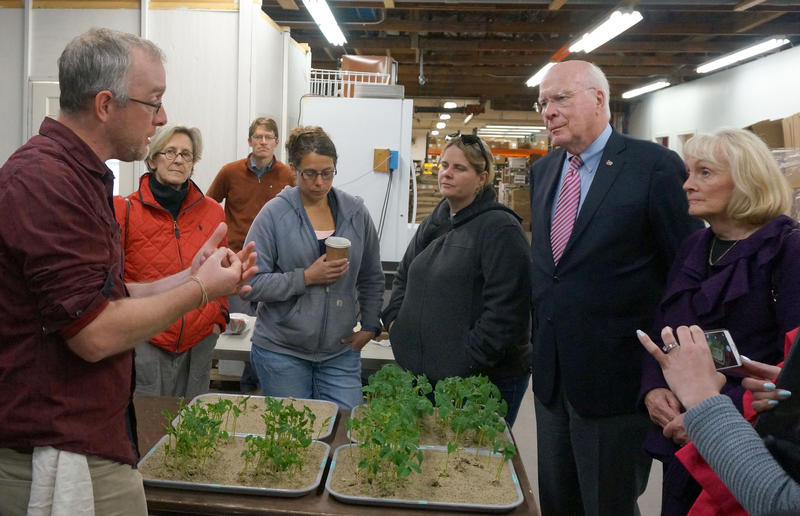 High Mowing Organic Seeds founder Tom Stearns gave Sen. Patrick and Marcelle Leahy and a group of Small Business Administration officials a tour on Wednesday. Of the seven businesses the SBA recognized this year, three were in Lamoille County.