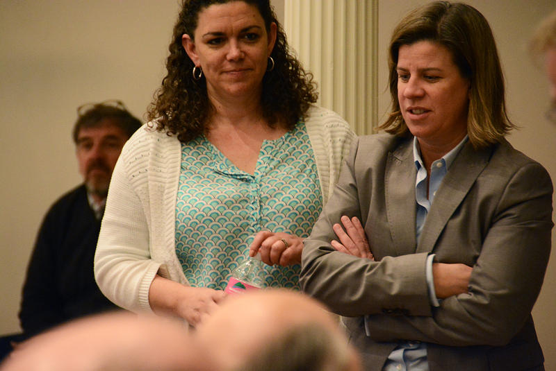 Stowe Rep. Heidi Scheuermann, shown here in 2015, says it was upsetting to see a bill that would have broadened the definition of an independent contractor fold under pressure from labor groups. But members of the business community also voiced concerns.