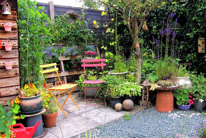 Vegetables, herbs, flowers, succulents —all topics are welcome on the Garden Show!