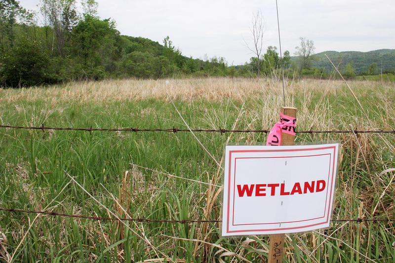 Vermont Gas has marked the wetland areas in Geprags Park, in Hinesburg, through which the company plans to build. The wetlands are state-designated, and residents say the chosen route for the pipeline would be devastating for a rich ecosystem.