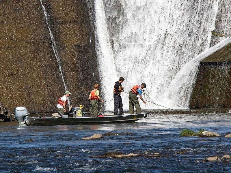 The research team heads to the 'Sturgeon Hole' below the Peterson Dam on the Lamoille River to check a net.