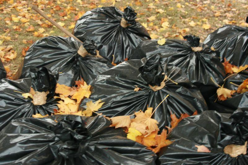 Starting next month, you might need to make new plans for your leaves. We're talking about the next phase of Vermont's Universal Recycling Law, and checking in on what the impact has been so far.