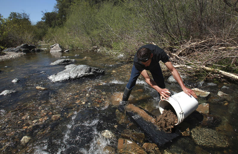 In this 2009 file photo, Todd Osborne dumps a bucket full of sand in gravel in the Bazooka Gold Trap sluice while gold panning along a creek near Coloma, Calif. Gold sluice season is underway in Vermont, but a permit is required.