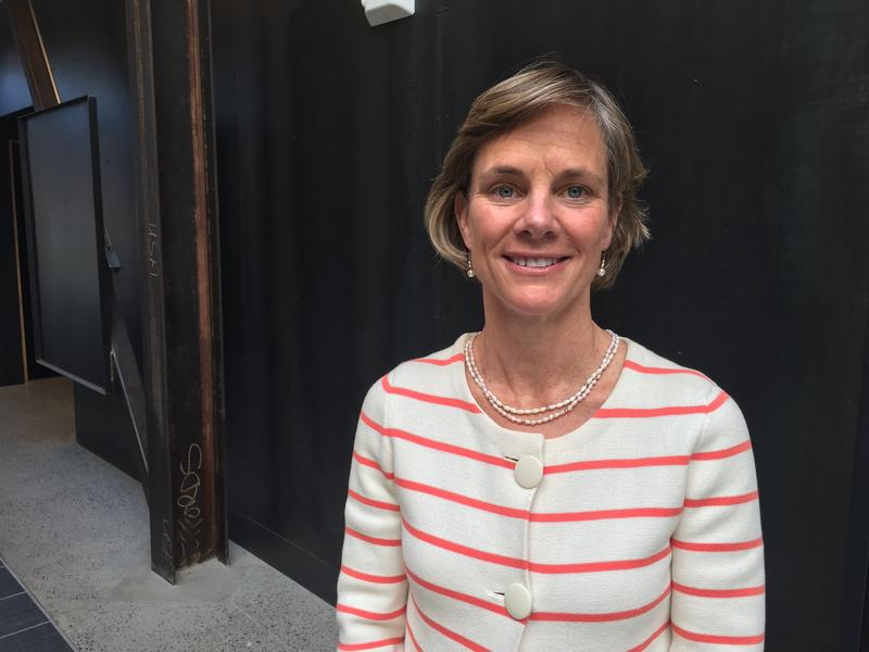 Democratic candidate for governor Sue Minter at the VPR Studios in Colchester after her interview on Vermont Edition. We've compiled her answers from that conversation on four particular topics: gun control, taxes, marijuana and health care.