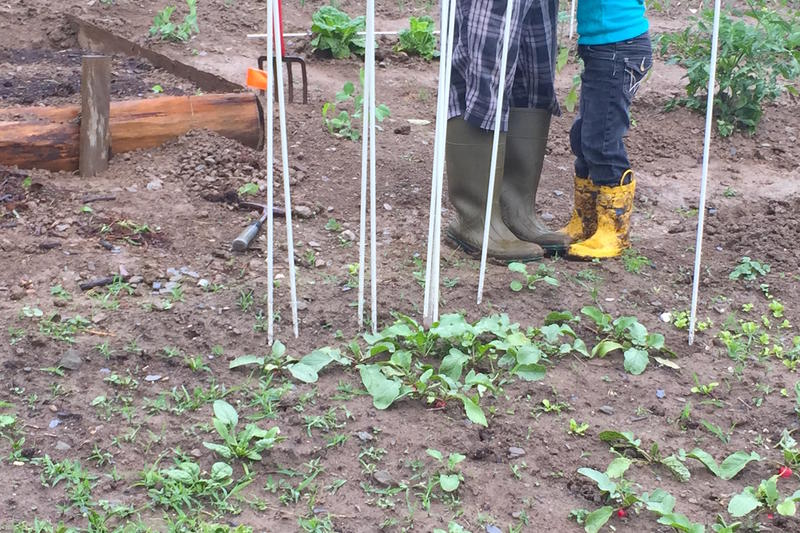 Regular access to food is a major challenge for migrant workers in Vermont. To help combat the food insecurity, a community-based program is building gardens for the workers so they can grow some of what they need at home.
