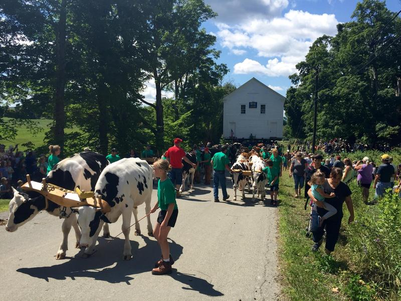 Thousands of Vermonters cheered as 44 oxen pulled the two-story Orleans County Grammar schoolhouse up a hill nearly half a mile.