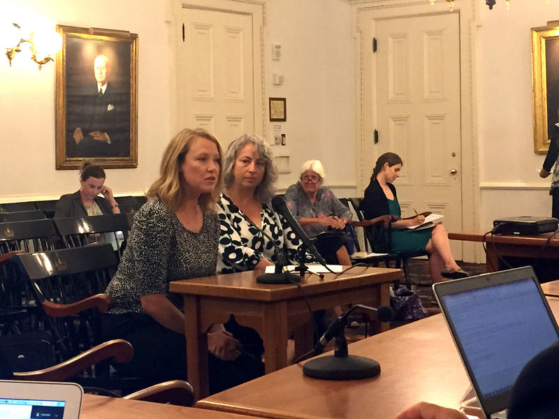 Jessica Blackman, left, and Michelle Fay, updated the Child Poverty Council Thursday on a coming report that will recommend financing options for child care in Vermont.