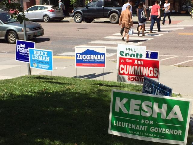 Candidate signs at Montpelier's polling place.