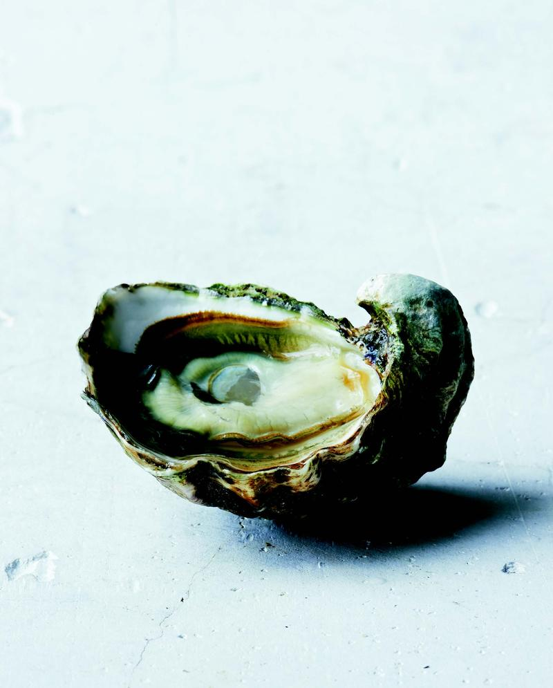 Kumamoto oysters, like the one pictured, are small and deeply cupped, with a sweet and fruity taste.