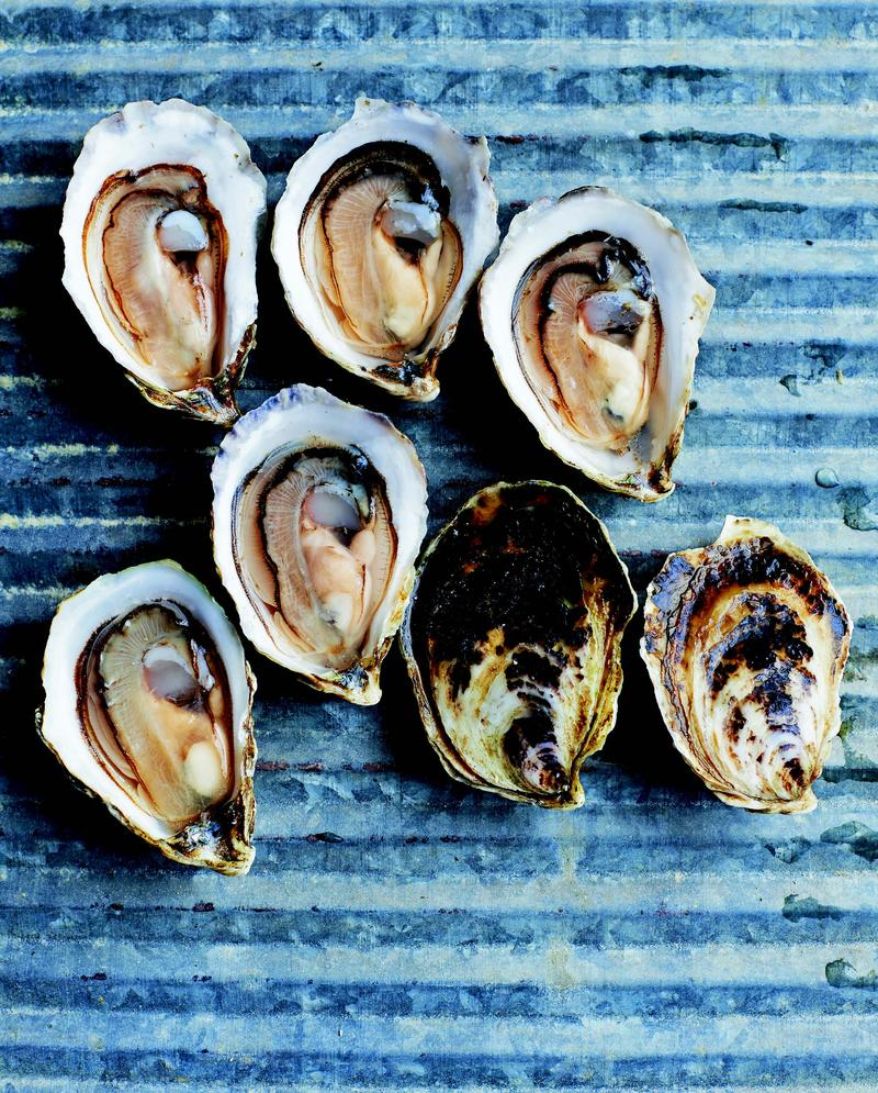 """The Essential Oyster"" author Rowan Jacobsen describes the taste of Wellfleet oysters, pictured here, as ""salty, nutty, buttered popcorn with a few shakes of brewer's yeast."""