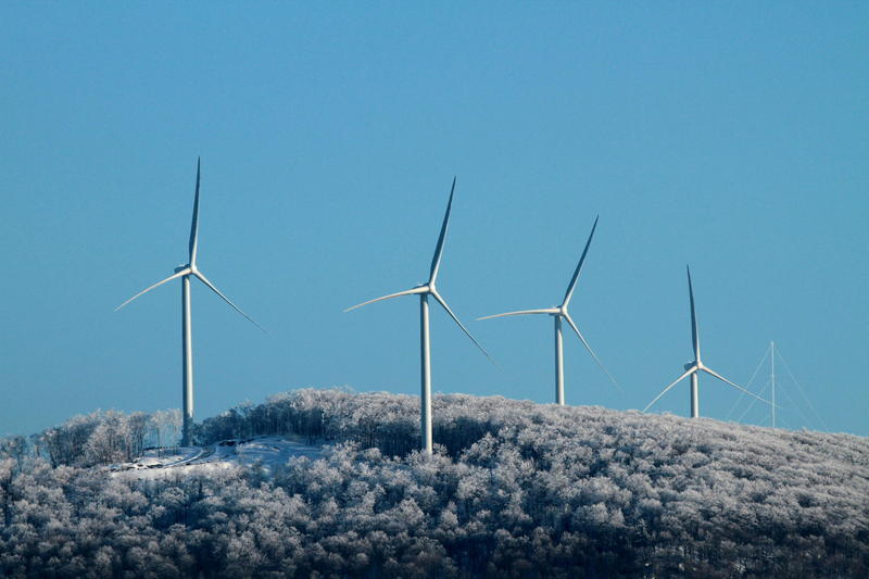The Georgia Mountain Wind Project includes four turbines that straddle  the towns of Milton, in Chittenden County, and Georgia, in Franklin County. The project is owned by Jim Harrison, who owns the land, and David Blittersdorf.