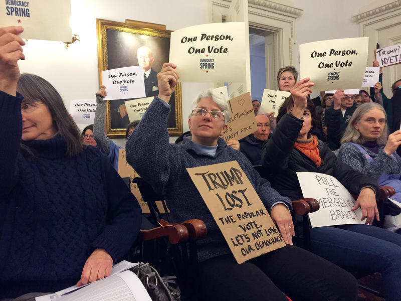 Jorika Stockwell, of Putney, was among the nearly 200 Vermonters who went to the Statehouse Monday to urge electors to deny Donald Trump the presidency. There were similar demonstrations around the country.