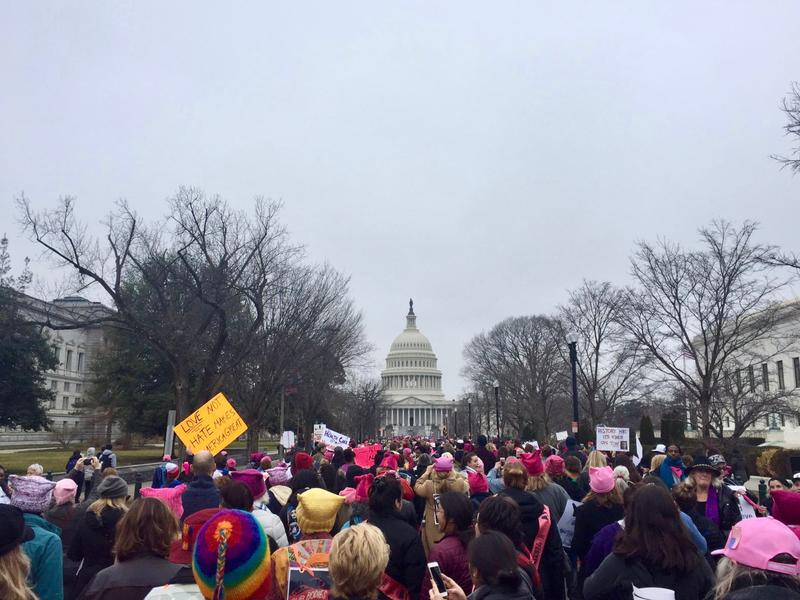 A sea of people gathered for the Women's March on Washington Saturday morning, including Vermonters who had traveled through the night by bus to participate.