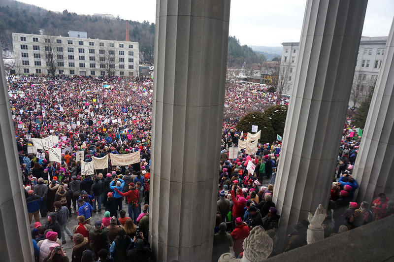 Montpelier's Unity Rally drew an estimated crowd of 15,000 people to the State House on Saturday.