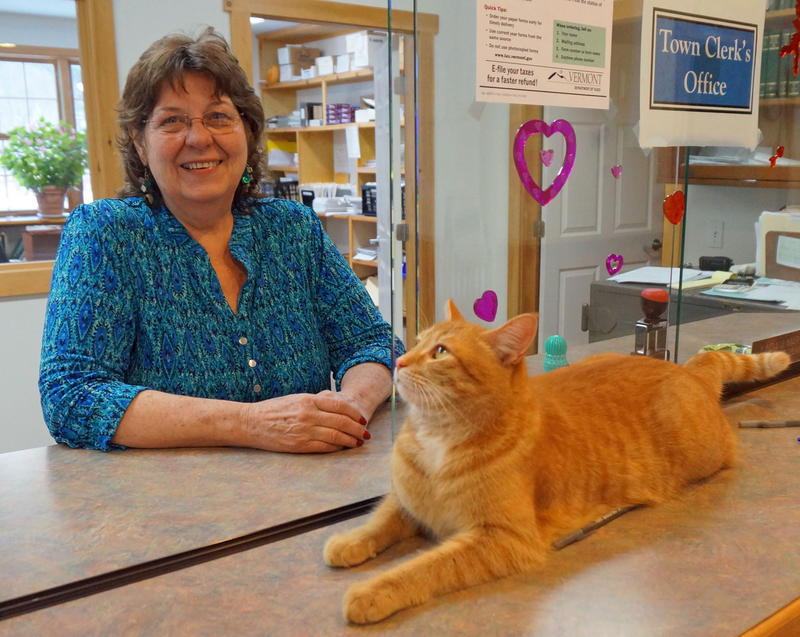 Jax the cat helps Wolcott Town Clerk Linda Martin greet visitors to the town office. Wolcott Town Clerk Linda Martin says she's disappointed that the House vote became so polarized but supports a recount in the contested Orange County House race.