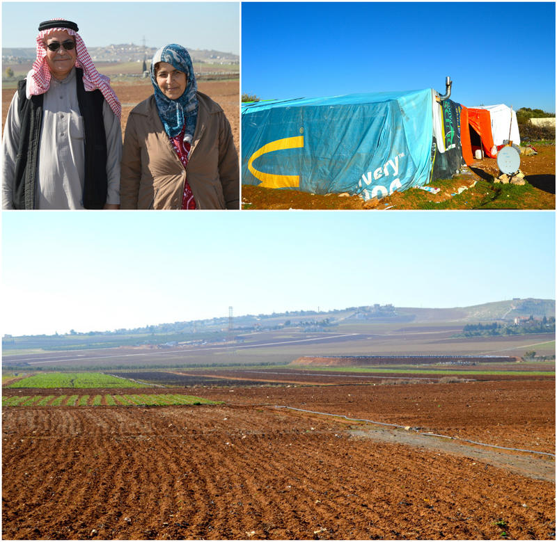 Photo montage of Hamad Awaid and his wife, Mariam Mohammed on the land they farm as migrant workers in Jordan. They were  farmers in Hama, Syria, and now live as migrant farmworkers in Jordan.