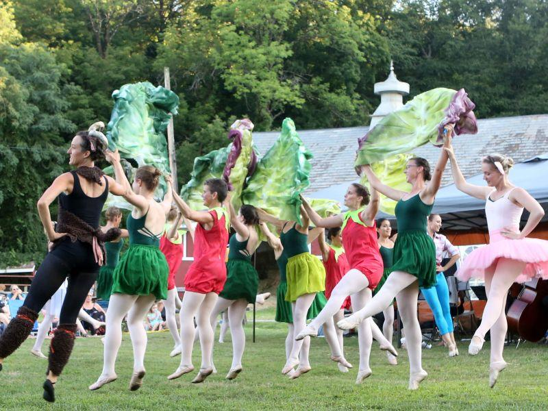 Adult dancers who have studied ballet are encouraged to audition this weekend for the third season of Farm To Ballet, which plans to perform on eight farms throughout the state this summer.