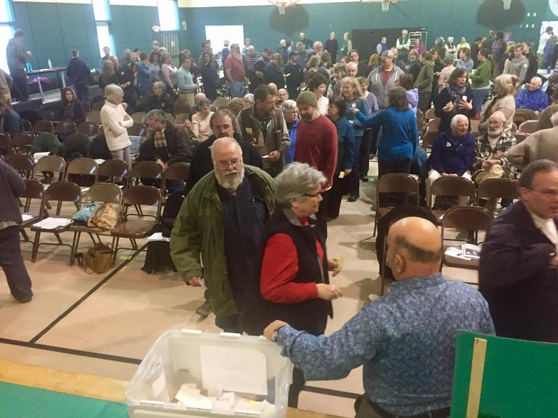 Voters in Tunbridge cast their ballots to vote on the merits of the proposed New Vistas project. The town passed a non-binding resolution opposing the project in a 165-4 vote.