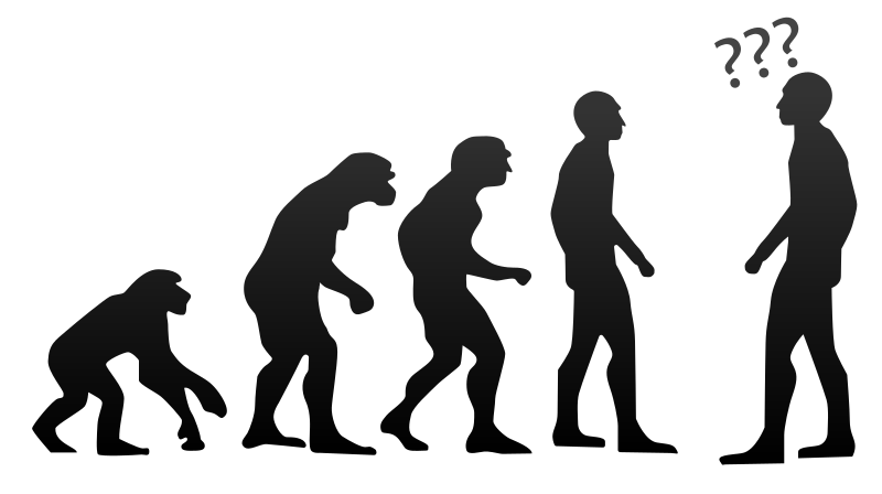 Humans evolved over millions of years into the creatures we are today. What will we be like in the next million years?