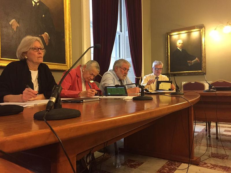 Sens. Jane Kitchel, Alice Nitka, Dick McCormack and Richard Westman, from left, heard this week from advocates who are seeking funding in the state budget.