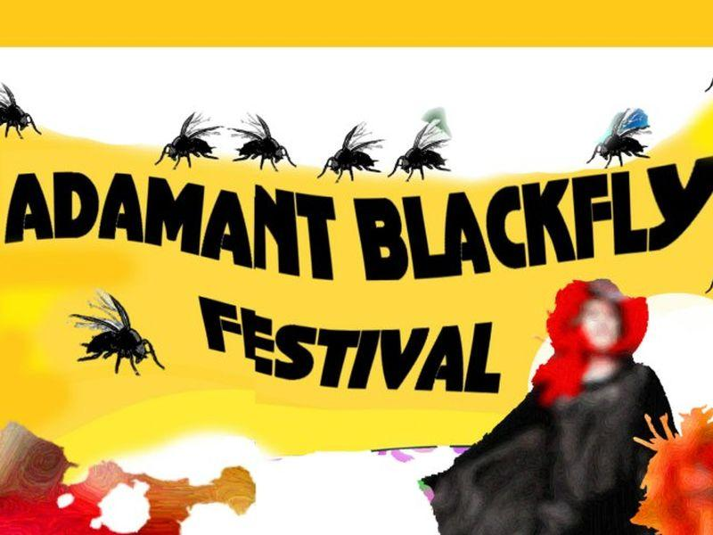 If you can't swat 'em, join 'em. Next weekend is the 13th Annual Adamant Blackfly Festival.