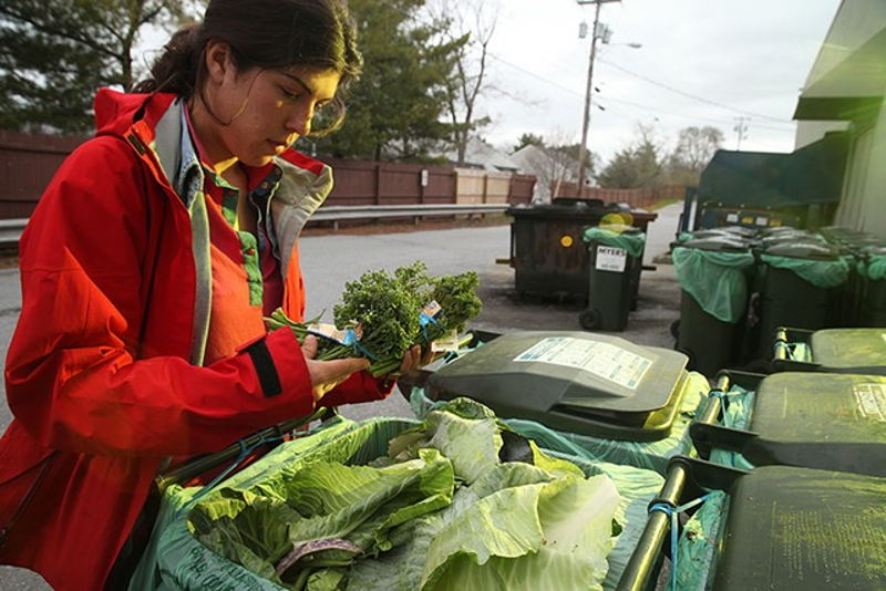 "UVM senior, Rose Thackeray, finds an assortment of produce while ""dumpster diving"" to create a meal for fellow students."
