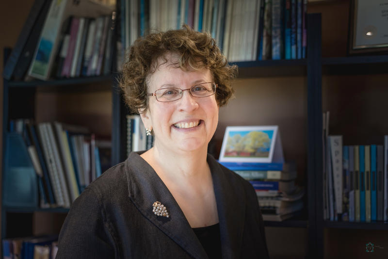 Dr. Elaine Collins, the current president of Johnson State College, will become president of the new Northern Vermont University on July 1.