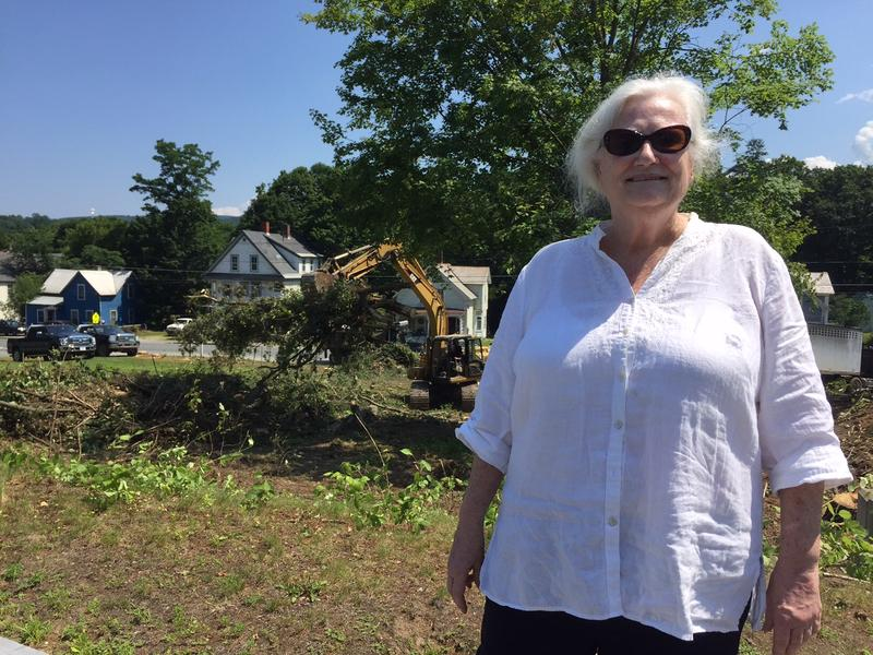 Lori Claffee is a member of the Union/Park Neighborhood Association which has been working to take back a neighborhood in Springfield. She is standing in front of a demolition site where a nuisance house was torn down.