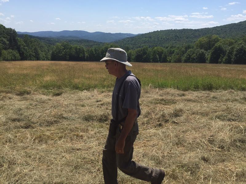 Walt Cottrell  lives in Newbury and he delays haying on his property to try to protect bobolinks and other birds that nest in the high grass. Cottrell says the bobolinks disappeared from his property about ten years ago.