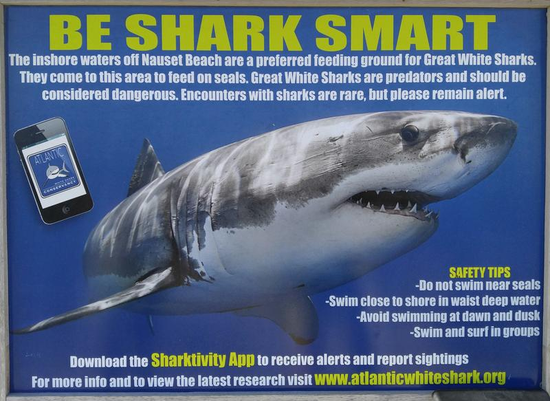 This Shark Warning sign is posted at Nauset Beach in Orleans, MA.