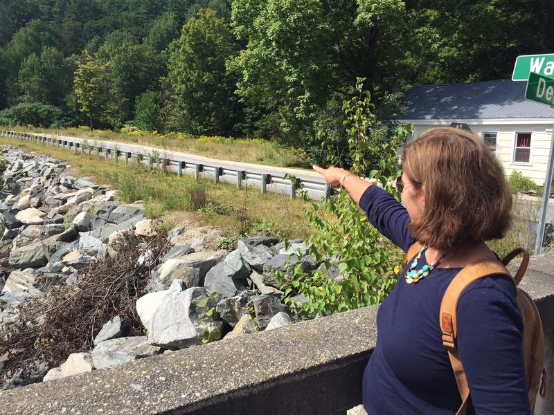 Karin Hardy points to land along Ball Mountain Brook in Jamaica where her house stood before Tropical Storm Irene swept it away. Hardy's former house was not in the FEMA flood zone and she did not have flood insurance.