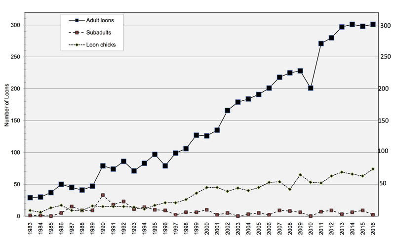 The Vermont Loon Watch chart shows the increase in loon population from 1983 to 2016.