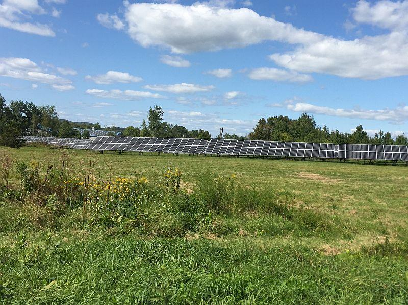 These solar panels are along Route 7 in New Haven. The Department of Public Service rejected New Haven's energy plan.