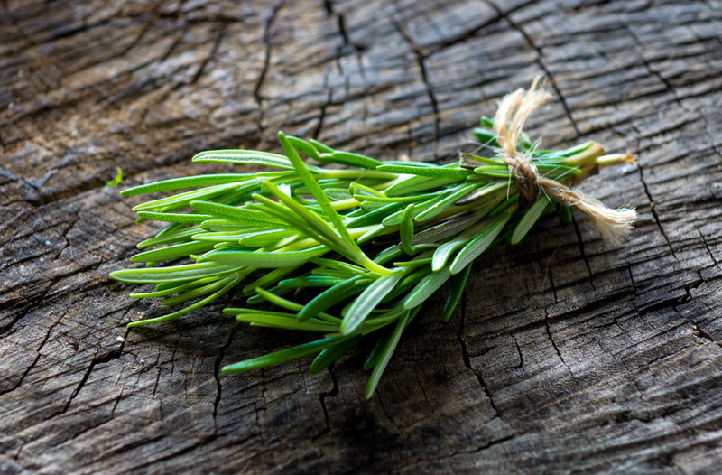 Many herbs from your garden will survive the cold of winter; however, some herbs like rosemary need to be brought indoors.