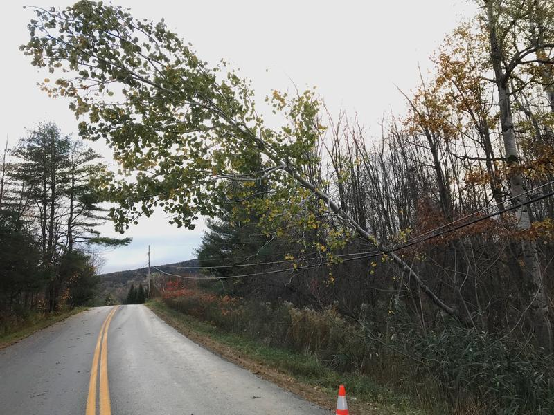 A tree downed on a powerline in Monkton, Vermont. Thousands of homes and buisnesses have been without power since wind storms hit the region on Sunday.