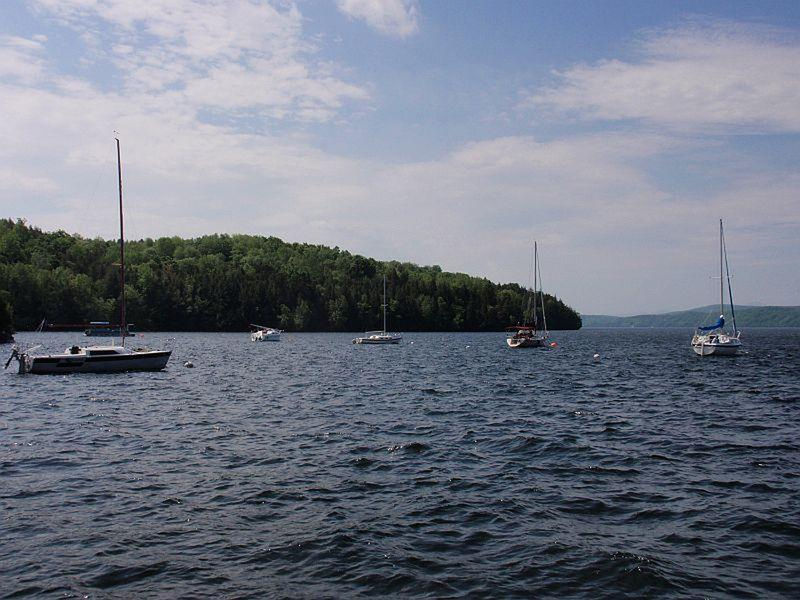 A new plan has been introduced to cleanup Lake Memphremagog, Vermont's second largest body of water. The plan seeks to reduce phosphorus loading by 29 percent over the next five years.