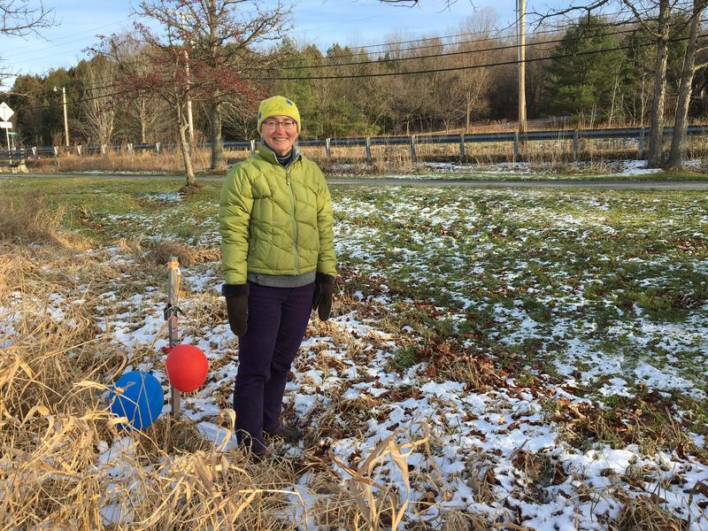 Catherine Goldsmith, of Responsible Growth Hinesburg, stands by a stake marking the corner of a proposed supermarket. The Vermont Supreme Court reversed an approval of Hannaford's site plan due to a required setback from a canal behind her.