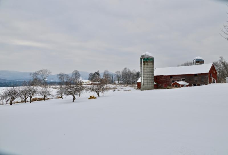The newly renamed Village Farm includes 20 acres of scenic land just across the street from Kamuda's Country Market and the Pittsford post office.