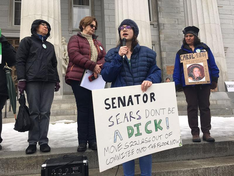 Leah Sagan-Dworsky, 19, of Montpelier, was among the people calling for stricter gun laws at a rally on the steps of the Statehouse Tuesday. Sagan-Dworsky is holding a sign asking Sen. Dick Sears to move two bills out of commitee.