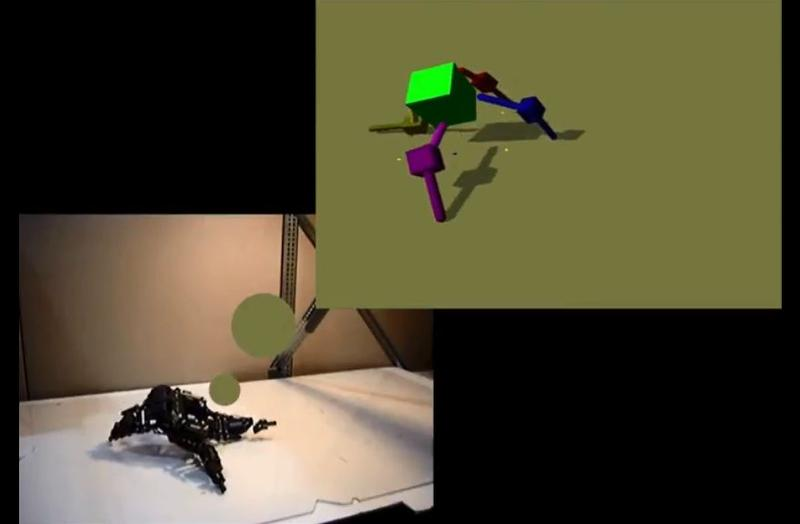 "A screenshot from one of Professor Bongard's videos shows a robot ""dreaming"" about how to move."