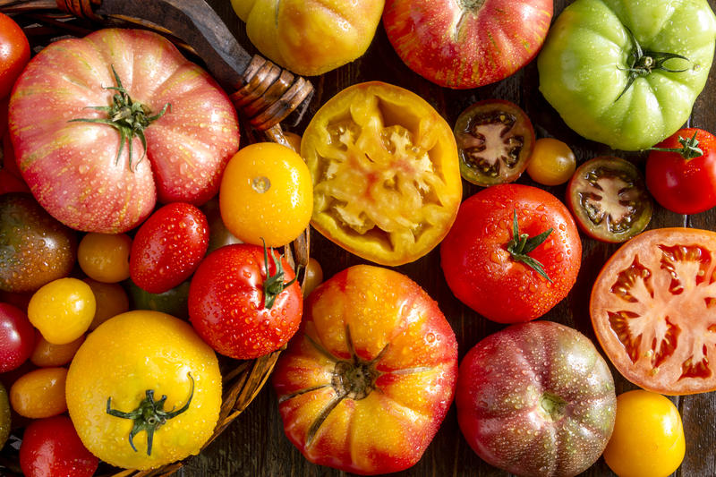 Heirloom tomatoes offer interesting shapes, flavors and colors while hybrid varieties give you disease-resistant and uniform produce. Is one better than another?